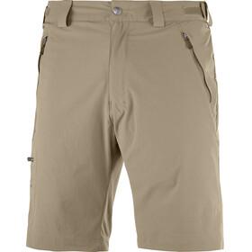 Salomon Wayfarer korte broek Heren beige